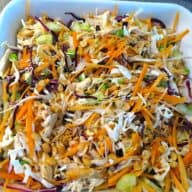 En sund og lækker thailandsk kyllingesalat, der kan serveres som et måltid. Eller undlad kyllingen, og brug salaten som tilbehør. Foto: Newyorker By Heart, Madensverden.dk.