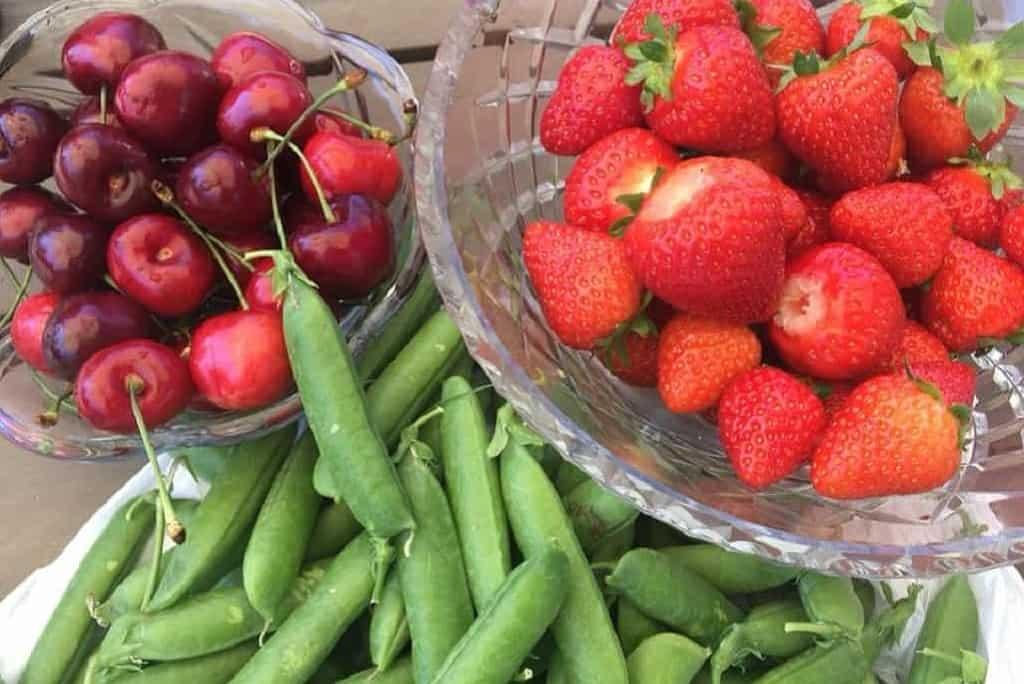 Grøntsager og frugter
