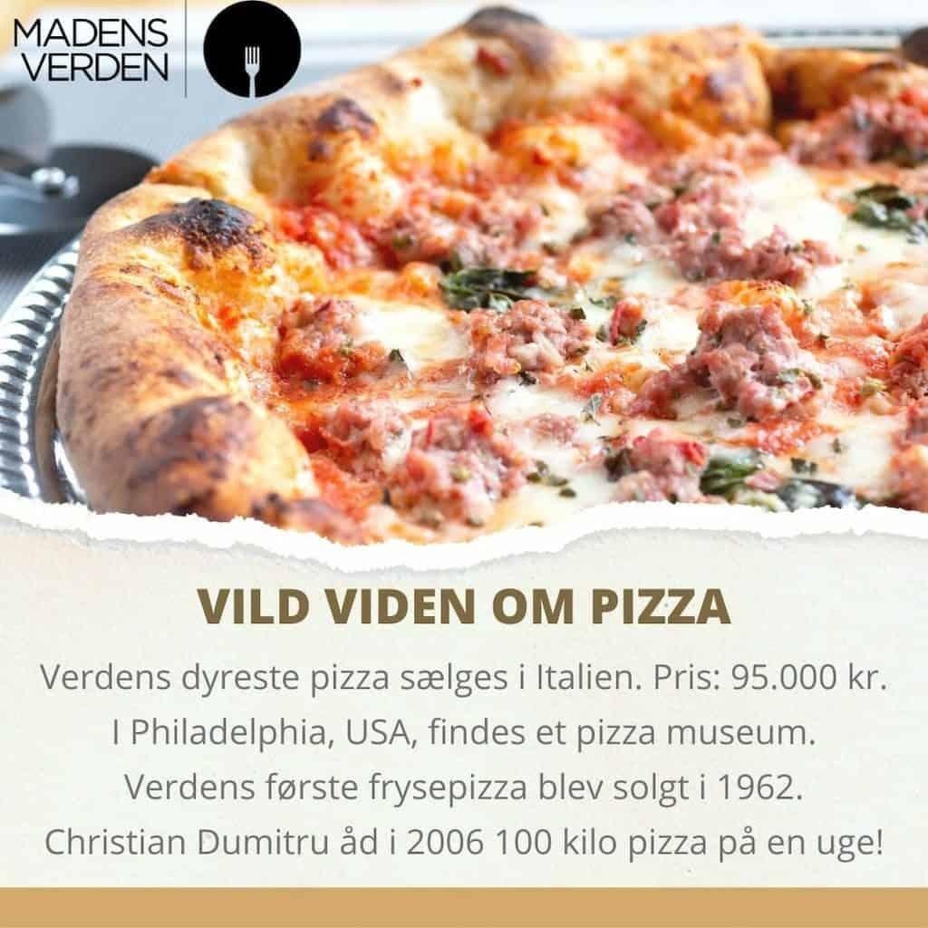 vild viden om pizza grafik