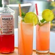 Rabarber Gin Hass - drink med rabarbersirup