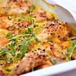Spidskål og kylling i fad med gulerødder og karry